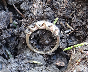 Gold and diamond wedding ring lost in East Bay back yard
