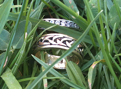 Two lost rings found in deep grass