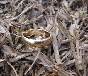 lost ring in grass tag the ring finders - Lost Wedding Ring